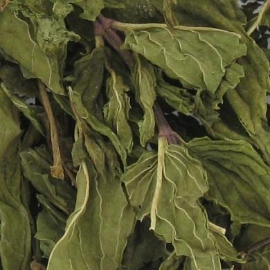 Purement Menthe Nanah marocaine feuilles bio