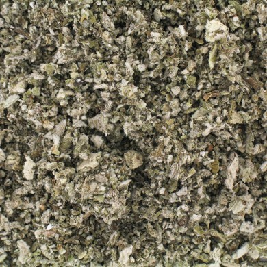 tisane bouillon blanc fleur bio