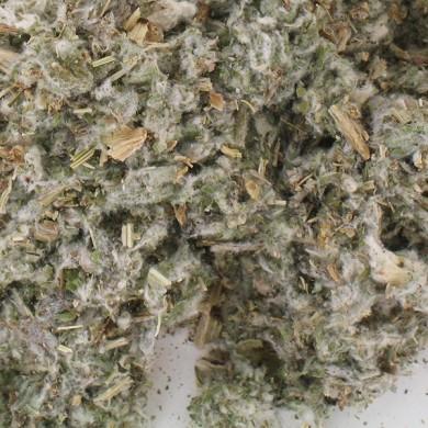 tisane artichaut feuille bio