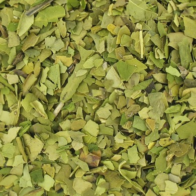 Organic green maté infusion boosti