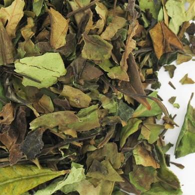 thé vert de chine pai mu tan BIO