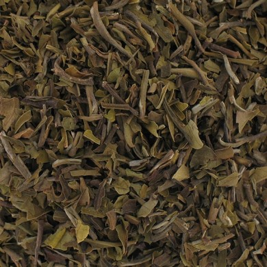 White tea from China Yin Zhen