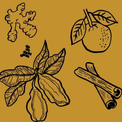 infusion CHAI  : cacao cannelle    BIO