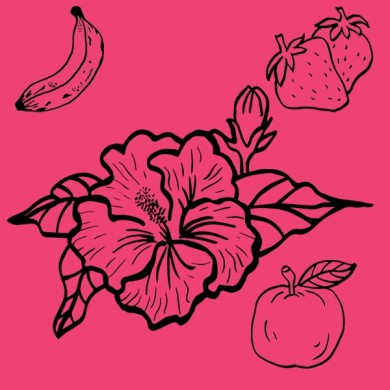Infusion bio d'hibiscus fraise banane