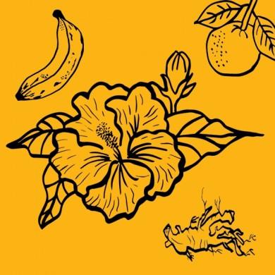 Infusion bio d'hibiscus maracuja orange