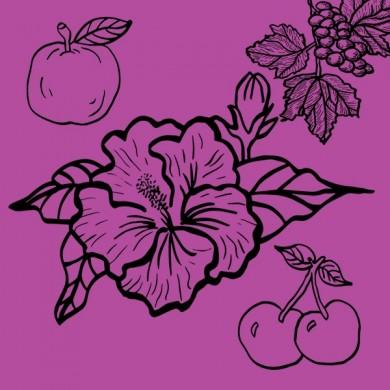 Infusion bio d'hibiscus cerise