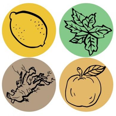infusion de fruits bio citron menthe reglisse ...