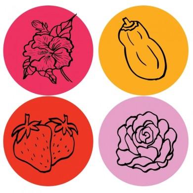 infusion de fruits bio hibiscus figue papaye fraise rose réglisse