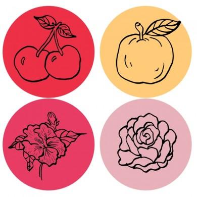 infusion de fruits bio cerise pomme hibiscus cassis groseille rose raisin huile d'amande amère