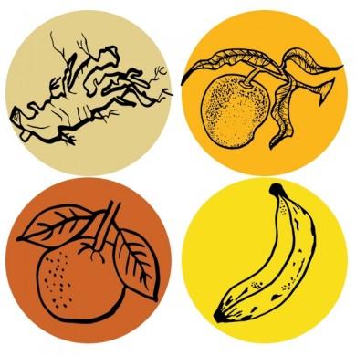 infusion de fruits bio maracuja mangue ...