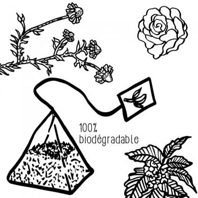 Infusion Bien être nuit Camomille Mélisse Roses  20 pyramides P8