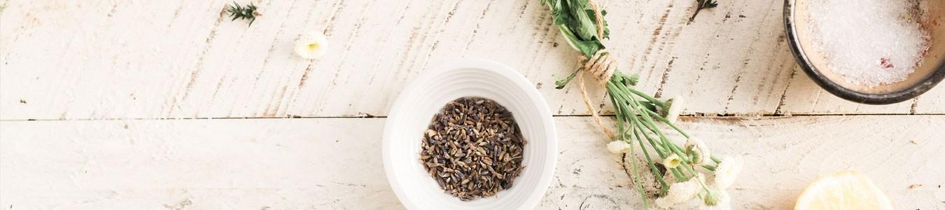 herboristerie - les simples - forme et santé -